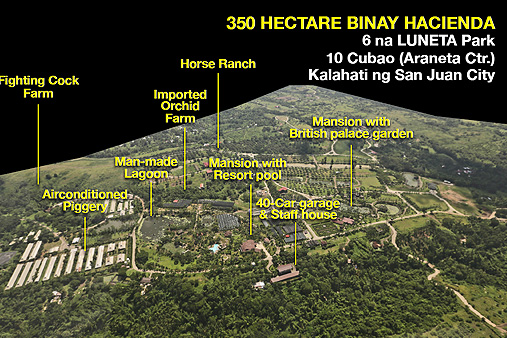 Aerial view of the 350 hectare Batangas Estate. Photo provided by to ABS-CBN  former Makati VM Ernesto Mercado.